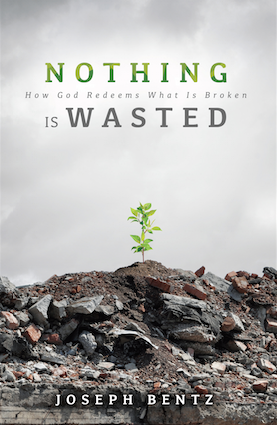 Nothing is Wasted - Joseph Bentz